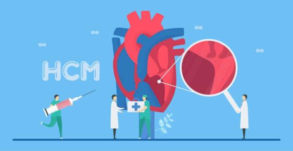 تقوية عضلة القلب